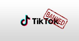 China's Bytedance Says Tiktok Ban Causing $500,000 Daily Loss, Risks Jobs